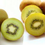 消化不良・慢性便秘・ガン抑制に役立つキウイフルーツ