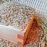 胚芽部分にガン細胞抑制の秘密があり、大腸ガン予防に効果的な玄米